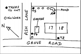 Tree Sketch plan example